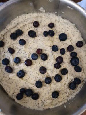 Entice Blueberry Poppyseed Cake - Daisy Health